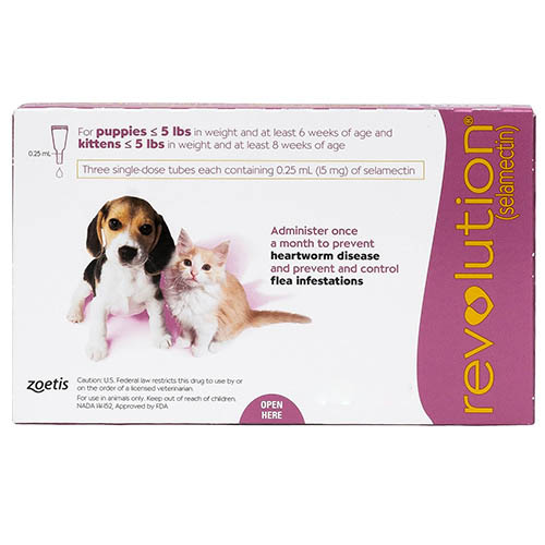 revolution-for-kittens-puppies-pink